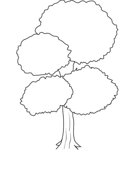 Árvore 2 4 - Aprender a Desenhar Árvores e Arbustos