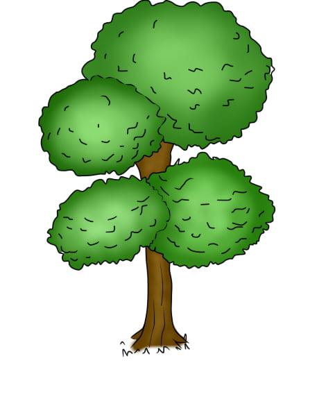 Árvore 2 7 - Aprender a Desenhar Árvores e Arbustos