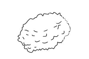 Arbusto 3 - Aprender a Desenhar Árvores e Arbustos
