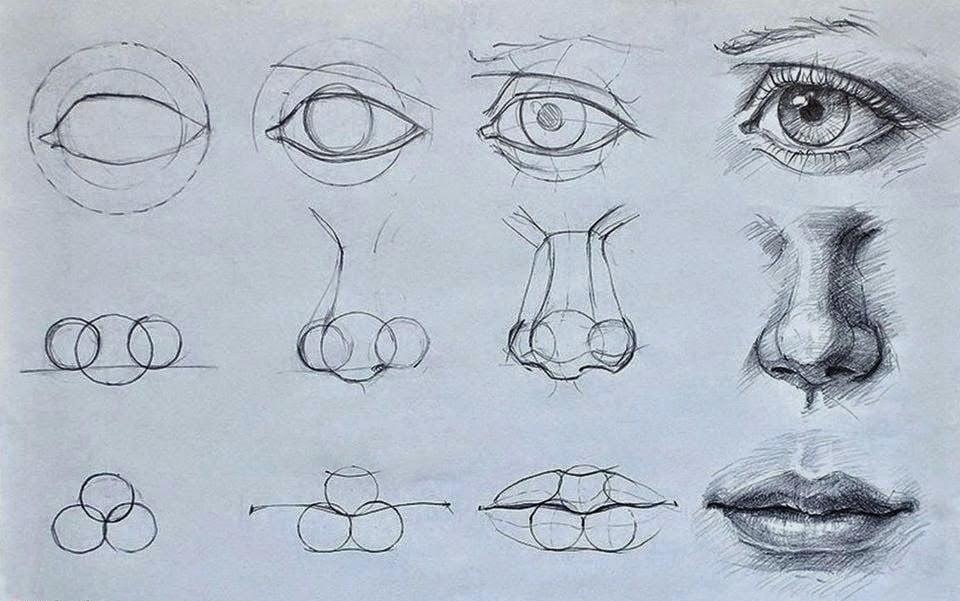 Fazer desenhos detalhado - 7 Dicas Únicas Para Começar a Fazer Desenhos Detalhados!