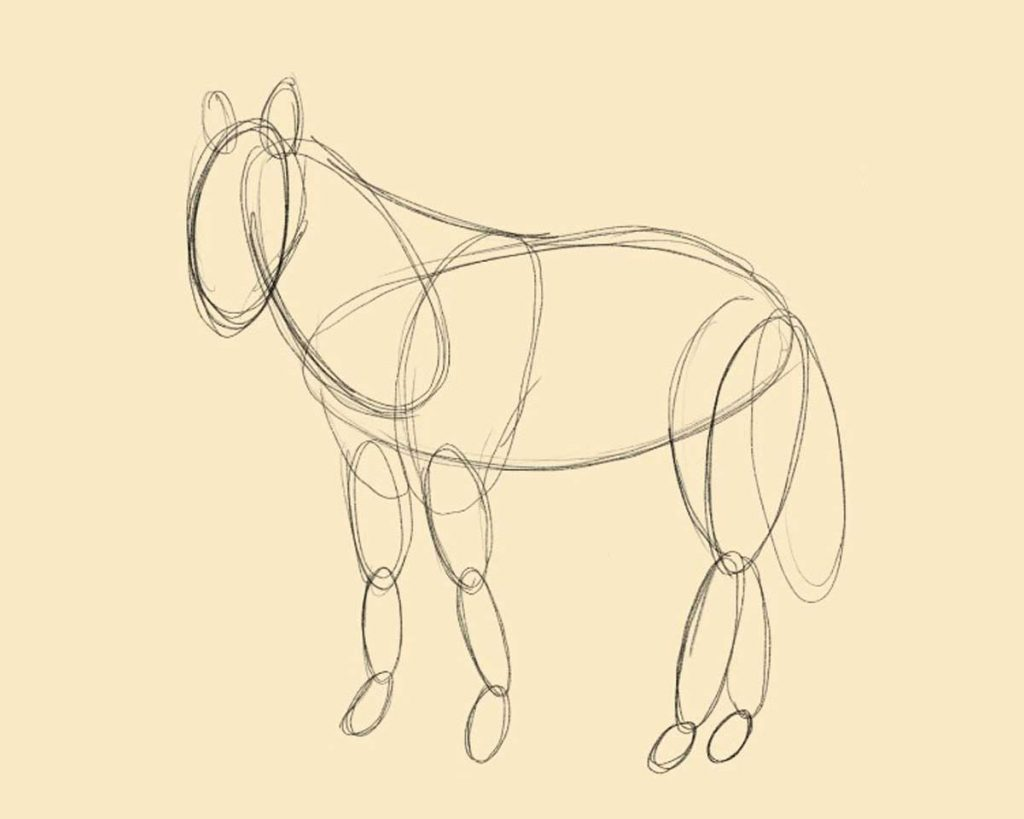 creare la bozza cavallo 1024x819 1 - Como Desenhar Um Cavalo