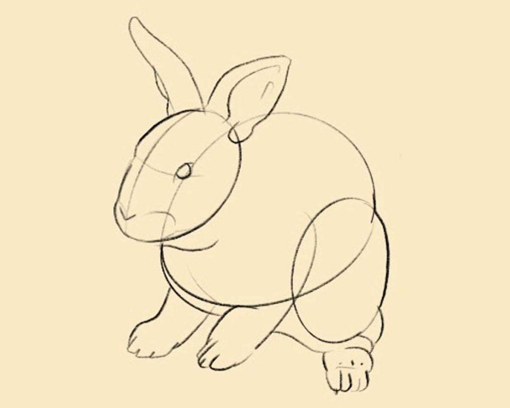 disegnare coniglio step 2 1024x819 1 - Como Desenhar Um Coelho