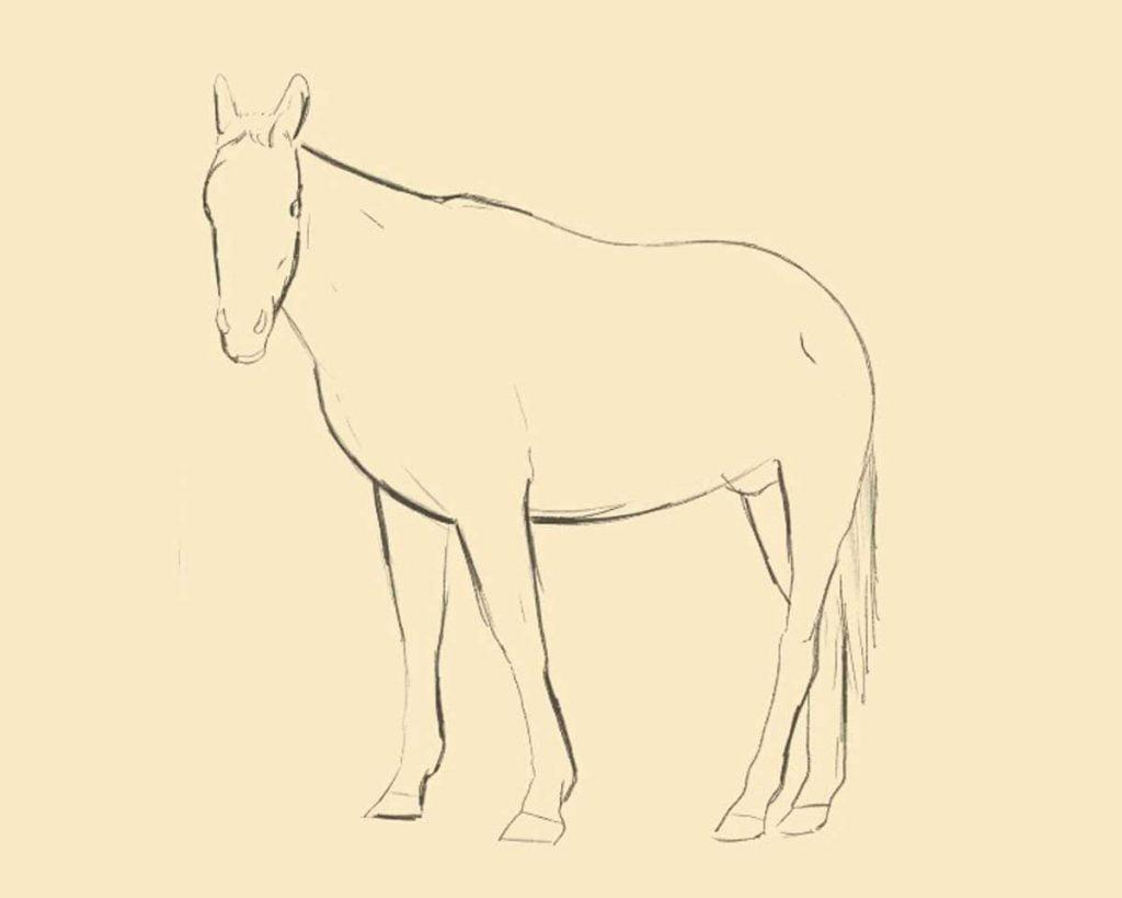 disegnare un cavallo prima parte 1024x819 1 - Como Desenhar Um Cavalo