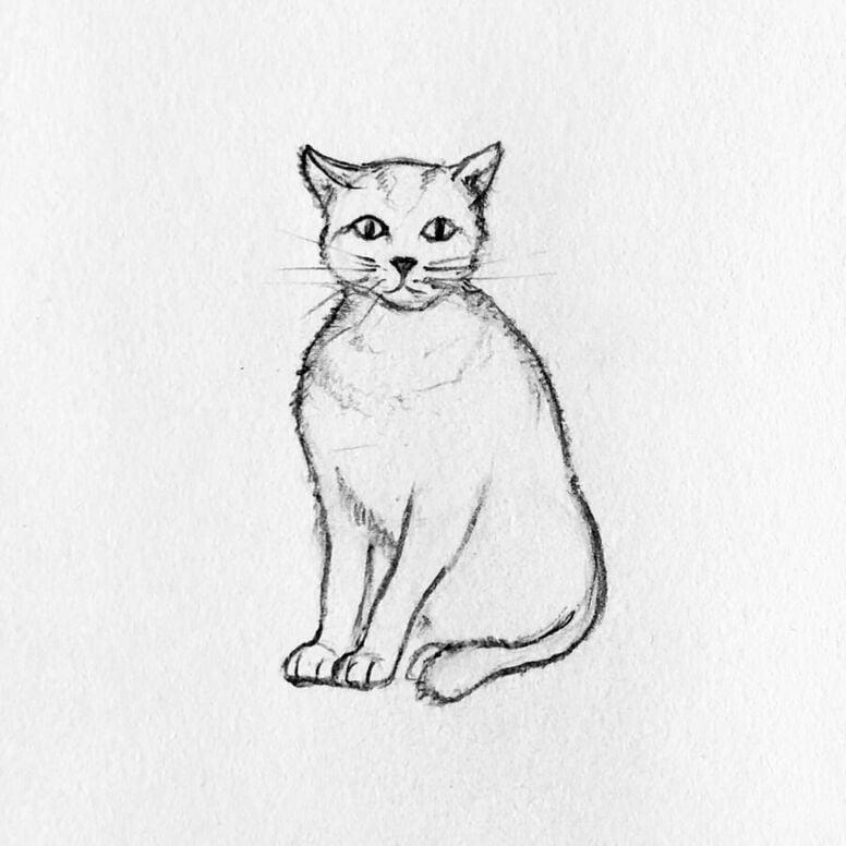 gato 5 - Como Desenhar Um Gato (Passo a Passo)