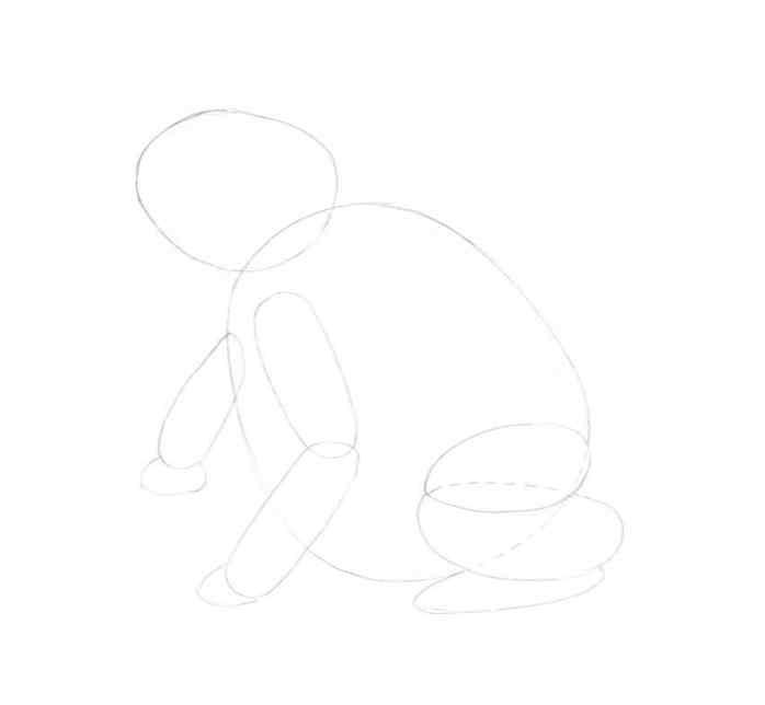 how to draw a frog step by step 5 - Como Desenhar Um Sapo