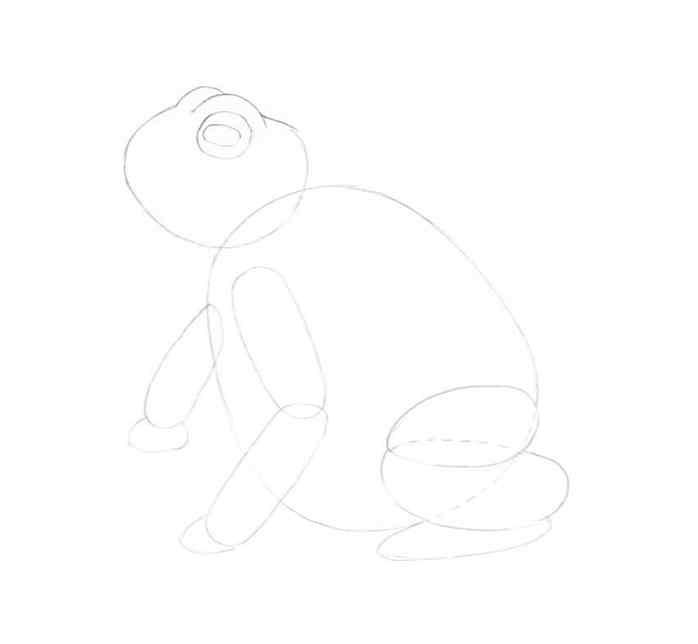 how to draw a frog step by step 6 - Como Desenhar Um Sapo